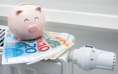 Investition in Nachhaltigkeit und Energieeffizienz – dürfen es noch ein paar staatliche Zuschüsse mehr sein?